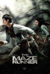 """""""Maze"""" Casts an Enthralling Grip"""