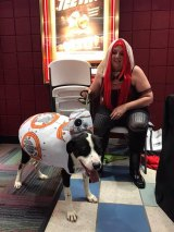 "IMAGES: Raleigh County Human Society Brings Paws to ""Jedi"" Lobby Party at Galleria 14"
