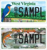 Brook trout and bluebird wildlife license plates available for West Virginia motorists‏