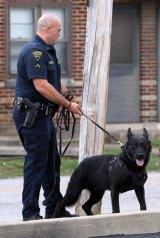 Fat Patty's Fundraiser June 8 for Bulletproof Police K-9 Vests