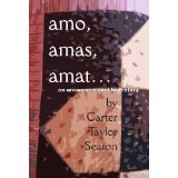 BOOK REVIEW: 'Amo, amas, amat...An Unconventional Love Story': Perfectly Timed for 30th Anniversary of Discovery of HIV-AIDS