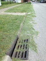 Beware Grass Cutters... Don't Blow Grass in Street Down Storm Sewers