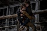Studios Bringing Back Star Powered Movies