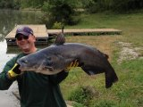 West Virginia State Record Blue Catfish Caught