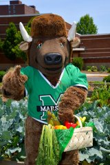 Marshall to partner with The Wild Ramp, offering Workplace Farm Share memberships to students, employees