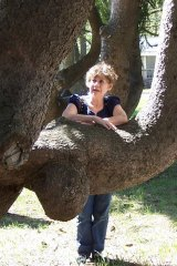 INTRODUCING SHELLY REUBEN'S NEW NOVEL:  My Mostly Happy Life – Autobiography of a Climbing tree
