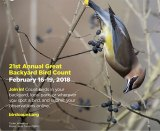 Marshall to participate in the Great Backyard Bird Count