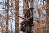 Hunters Encouraged to Perform Pre-Season Scouting and Equipment Inspections