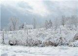 Snowy Scenes from Buckhannon, WV