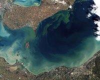 Testing Shows Presence of Toxin in Ohio River above Huntington
