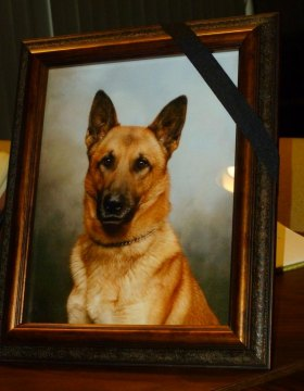 Police Week Begins with Council Honoring Fallen K-9