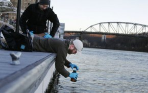 NSF awards rapid response grants to study West Virginia chemical spill