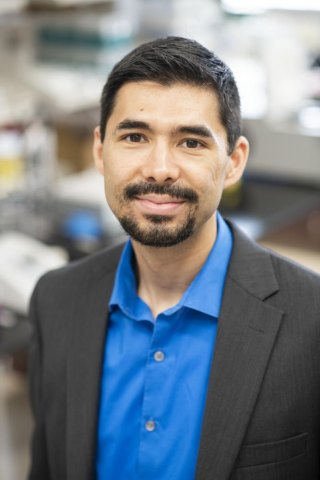 Findings from Marshall University researcher reveal insights into brain circuitry