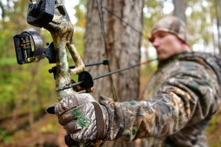 West Virginia's Archery and Crossbow Seasons Open Sept. 30