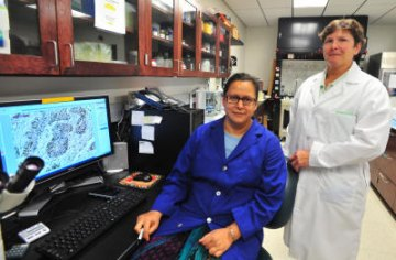Marshall Scientist Receives Grant for Lung Cancer Research