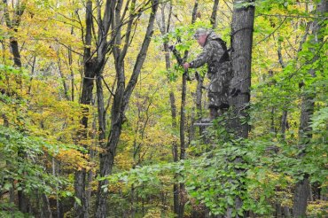 West Virginia DNR Law Enforcement Section offers tree stand safety tips