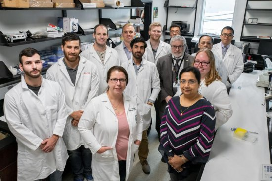 Marshall School of Medicine research team defines possible anti-aging intervention