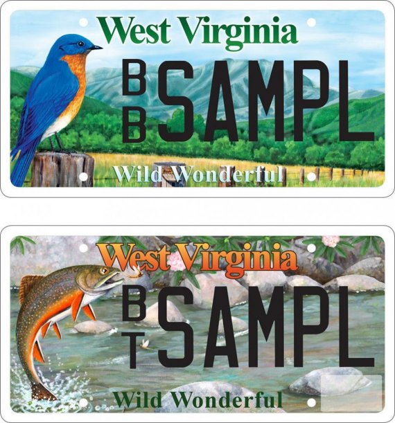Brook trout and bluebird wildlife license plates available for Department of motor vehicles charleston west virginia