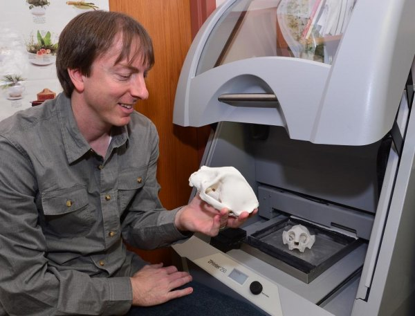 Marshall Professor Dr. Paul Constantino holds a skull created in MU's 3-D printer.